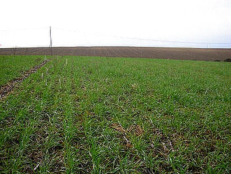 31 haute garonne a2c le site de l 39 agriculture de for Chambre agriculture haute garonne