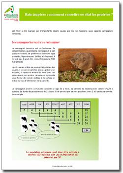 rats taupiers comment remettre en tat les prairies a2c le site de l 39 agriculture de. Black Bedroom Furniture Sets. Home Design Ideas