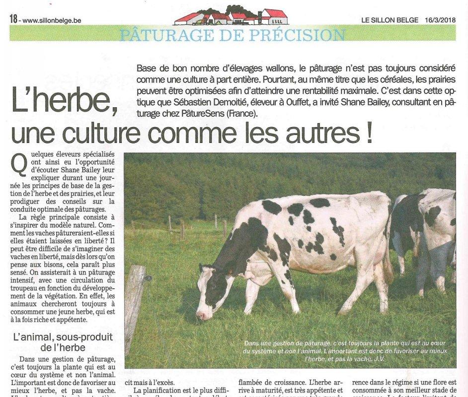 site belge