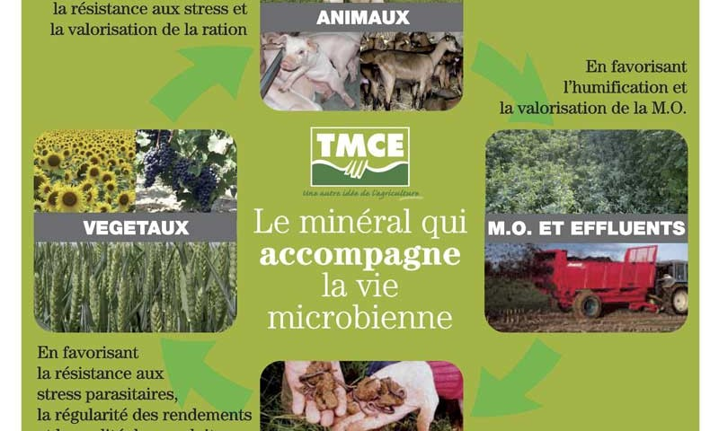 sites/agriculture-de-conservation.com/IMG/jpg/tmce-fertilite.jpg