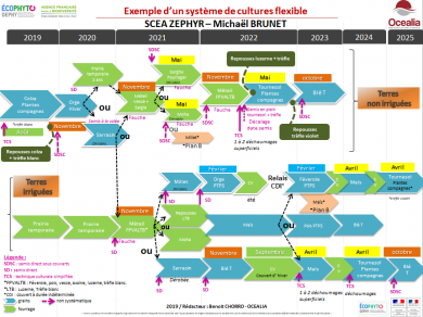 Exemple d'un système de culture flexible