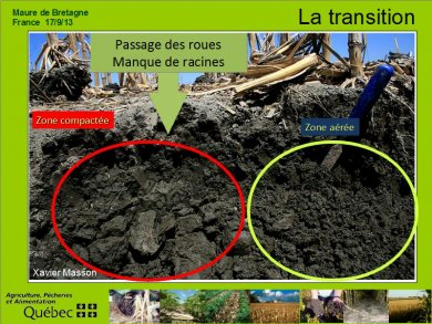Comprendre la transition